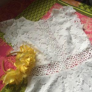 Lace Dress Catherine Malandrino
